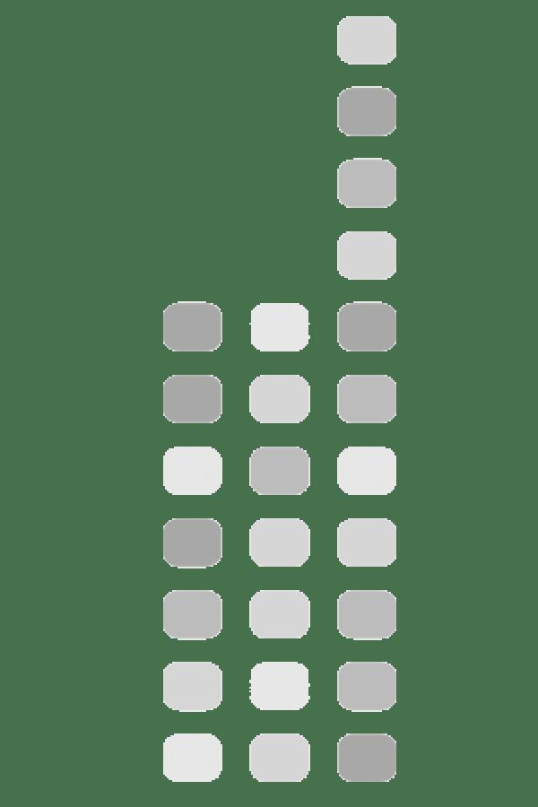 Motorola DM1600 Analoog